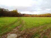 Купить земельный участок в Большое Новосурино