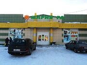 Алтай. с.Черемное, 50 км от Барнаула - Фото 1