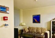 Элитная квартира у моря!, Продажа квартир в Сочи, ID объекта - 327063606 - Фото 3