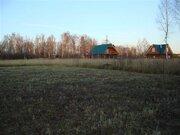 Земельный участок в СНТ - Фото 4