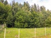 Продаю участок 30 соток в лесу, Дмитровское шоссе - Фото 3