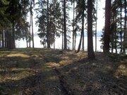 Продается участок 20 сот. , Новорижское ш, Осташево, 110 км. от . - Фото 2