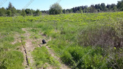 Можайское ш. 100 км от МКАД, Павлищево, Участок 20 сот. - Фото 2