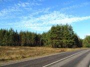 7 Га с/х-назначения в дер.Лисицыно - 90 км Щёлковское шоссе - Фото 1