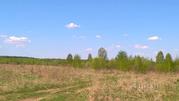 Участок в Ярославская область, Брейтовский район, с. Прозорово (1.0 . - Фото 2