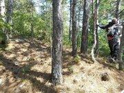 Продажа земельного участка в п. Краснокаменка 7 соток в леса. - Фото 5