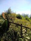 Продам сад в СНТ Любитель-2 - Фото 3