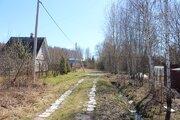 Участок в деревне Красновидово двести метров от воды - Фото 4