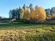 Участок 15 сот ИЖС в д. Костино, Рузский район, 90 км от МКАД - Фото 4