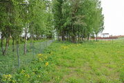 Участок у леса 24,8 сот для ИЖС рядом с Истринским вдхр. 48 км от МКАД - Фото 3