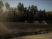 Участки в сосновом лесу от 8 соток - Фото 1