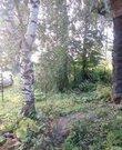 Новорижское ш. 80 км от МКАД, Щелканово, Дом 50 кв. м - Фото 4