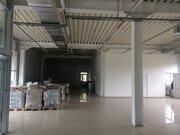 Сдаю площади в новом ТЦ Бригантина, Аренда торговых помещений в Вологде, ID объекта - 800362561 - Фото 4