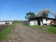Сель/хоз угодье 55 Га с действующим фермерским хозяйством - Фото 4