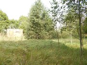 Участок 15 соток в д.Бражниково в 1 км от Рузского вдх. - Фото 1