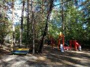 Сосновый участок в стародачном поселке Барвихе Новь - Фото 5
