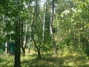 Продам участок в деревне Крюково рядом с лесом и г Чехов - Фото 3