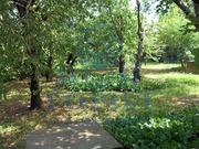 Продам дом в г. Батайске (06453-101)