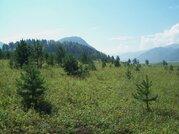 Земельные участки в Чемале