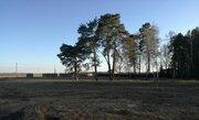 Участки в сосновом лесу от 8 соток - Фото 5