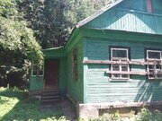 50 кв.м дом на участке 9 соток с.Добрыниха - Фото 2
