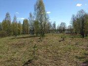 Продажа земельного участка в Валдае под строительство базы отдыха - Фото 5
