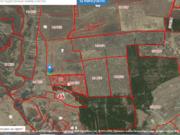 Продам 2 га возле д. Жеребцово, Купить земельный участок Жеребцово, Курский район, ID объекта - 202107696 - Фото 1