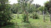Продается земельный участок в с. Борисовка - Фото 3