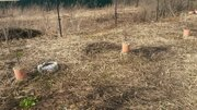 Зуп-527 зу 6 сот в д. Кривцово - Фото 5
