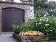 1 800 000 €, Каменный коттедж в Тоскане как отличная инвестиция, Продажа домов и коттеджей в Италии, ID объекта - 503897177 - Фото 7