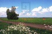 Земельные участки в Алтайском крае