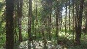 Лесной участок 15 сот. - Фото 3
