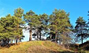 Панорамный участок с роскошными соснами 16 сот, Новорижское ш, 30 км .