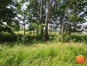 Продается участок, Новорижское шоссе, 55 км от МКАД - Фото 1