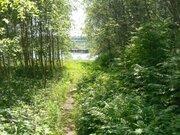 Участок 40 соток на реке Хотча - Фото 3