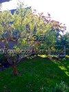 Новорижское ш. 55 км от МКАД, Анашкино, Дача 70 кв. м, Продажа домов и коттеджей Анашкино, Рузский район, ID объекта - 502693938 - Фото 10