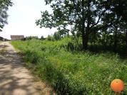 Продается участок, Новорижское шоссе, 55 км от МКАД - Фото 2