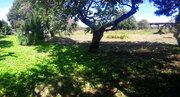 Великолепный участок в центре деревни Каменки! Рядом водоём, лес, храм - Фото 5