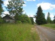 2 гектара со старым домом в д. Богданово Пушкиногорского района - Фото 1
