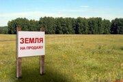 Продам участок, Промышленные земли Шорохово, Исетский район, ID объекта - 202263726 - Фото 5