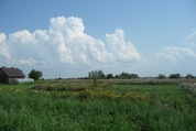 Участок в деревне Синьковщина - Фото 3