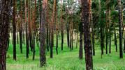 Земельный участок в п.Чернолучье - Фото 1
