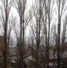 12 000 000 Руб., Продается нежилое помещение, Продажа складов в Саратове, ID объекта - 900276543 - Фото 18