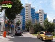 Новая однокомнатная квартира с современным ремонтом и мебелью в ., Купить квартиру в Белгороде по недорогой цене, ID объекта - 320658213 - Фото 1
