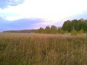 Земельный участок 25 соток в д. Беляево Чеховского р-на - Фото 3