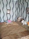 Продажа квартир в Сковородино