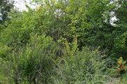 Продается дом 29 м на участке 16 сот в деревне Крутовец - Фото 4