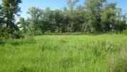 Продаю участок на берегу водоема д. Костоусово - Фото 2