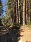 Земельные участки, ул. Сосновая, д.11 к.А - Фото 3