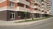 Продажа торгового помещения, Краснодар, Ул. Гидростроителей - Фото 4